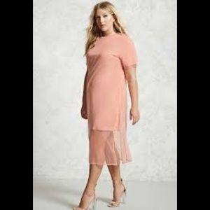 Time for Spring Blush Mesh Dress